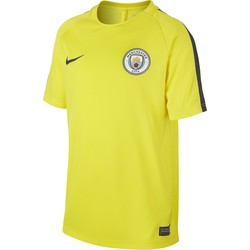 Men's Nike Dry Manchester City FC Football Top YELLOW 2016 - 2017