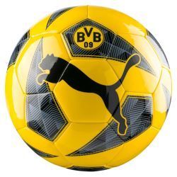 Ballon Fan Dortmund 2017/18