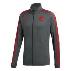 Veste entraînement Bayern Munich gris 2018/19