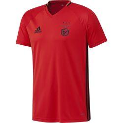 Maillot entraînement Benfica 2016 - 2017