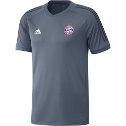 Maillot entraînement Bayern Munich Europe gris 2018/19