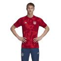 Maillot entraînement Bayern Munich graphic rouge 2019/20