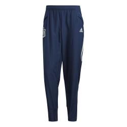 Pantalon survêtement Espagne bleu 2020
