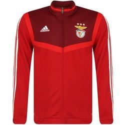 Veste survêtement Benfica rouge 2019/20