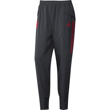 Pantalon entraînement Bayern Munich Europe gris rouge 2020/21