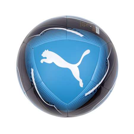 Ballon OM noir bleu 2020/21