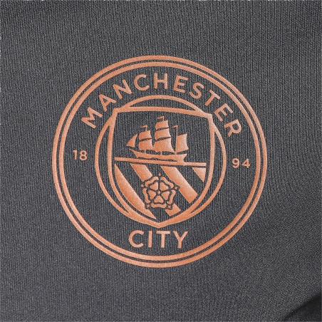 Maillot entraînement Manchester City gris cuivre 2020/21