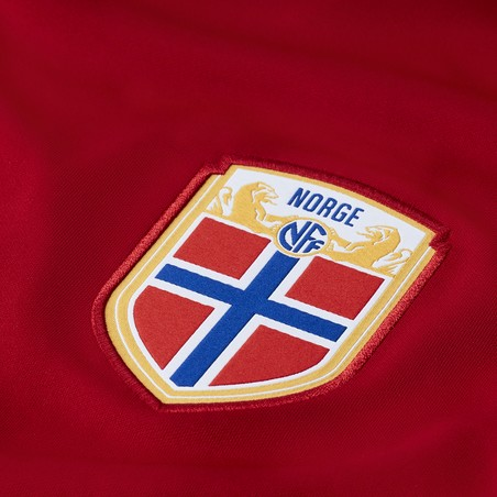 Maillot Norvège domicile 2020