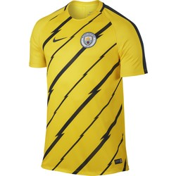 Men's Nike Dry Manchester City FC Top YELLOW 2016 - 2017